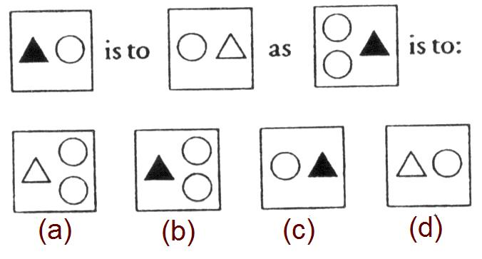 MENSA Test answers